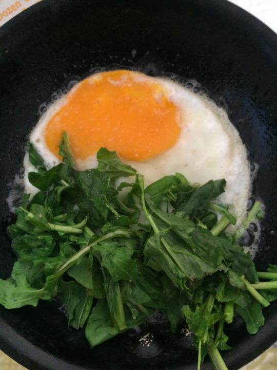 egg_arugula